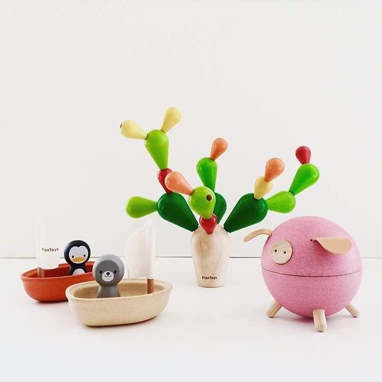 Egyensúlyozó - Kaktusz