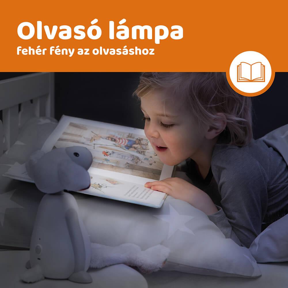 Időzítős olvasó lámpa - Fin - szürke