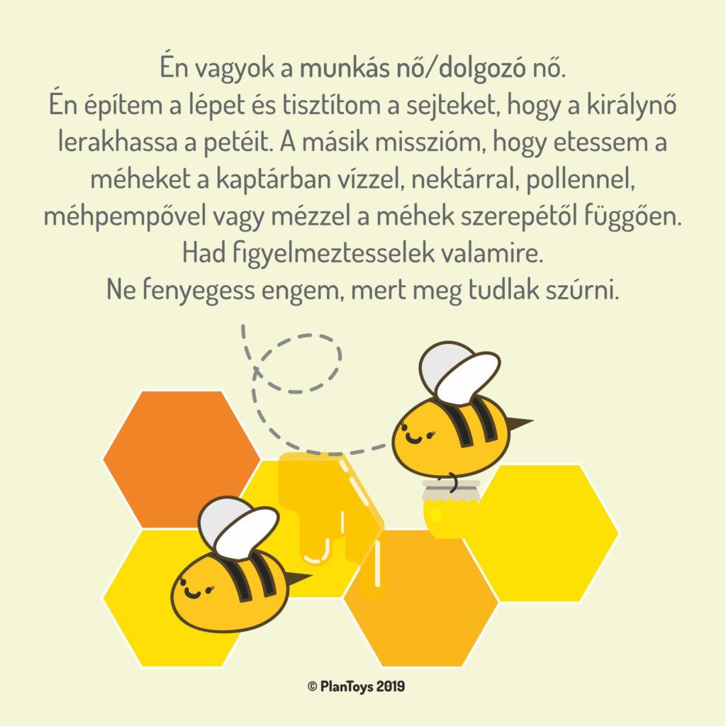ismerd meg a méhek